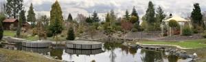 Unser Schaugarten mit Teichanlage
